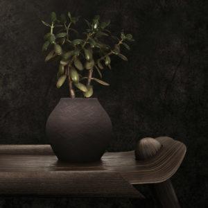 blume im studio fotografiert mit vase aus cinema4d